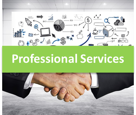 Professional Services Widget